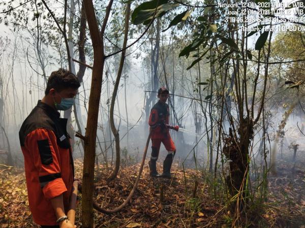 Lahan Terbakar di Ogan Ilir Seluas 3 Ha, Berhasil Dipadamkan Satgas Gabungan