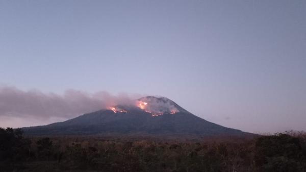 Lontaran Lava Pijar Erupsi Gunung Ile Lewotolok Sebabkan Karhutla