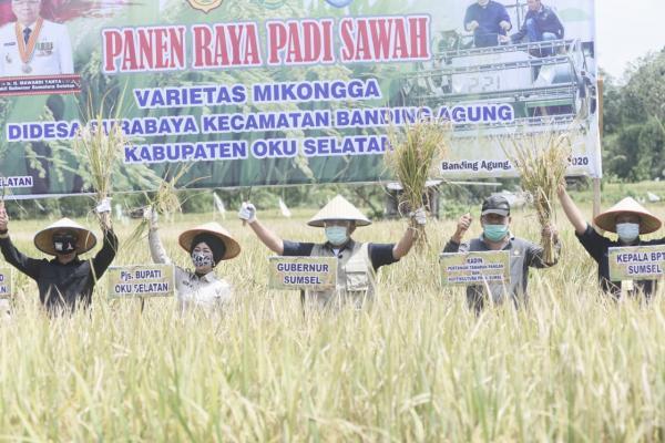 Panen Raya di OKUS, HD Yakin Sumsel Segera Jadi Jawara Penghasil Pangan di Indonesia