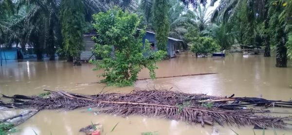 Sungai Lae Cinendang Meluap, 90 Rumah di Aceh Singkil Terendam Banjir